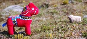 Mora-Nisse fick följa med på fjällen. Han träffade en sten som liknade ett får.