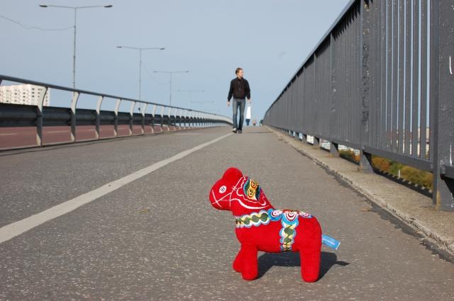 """Mora-Nisse tog en paus när han gick över Västerbron, Stockholm Marathons största """"backe""""."""