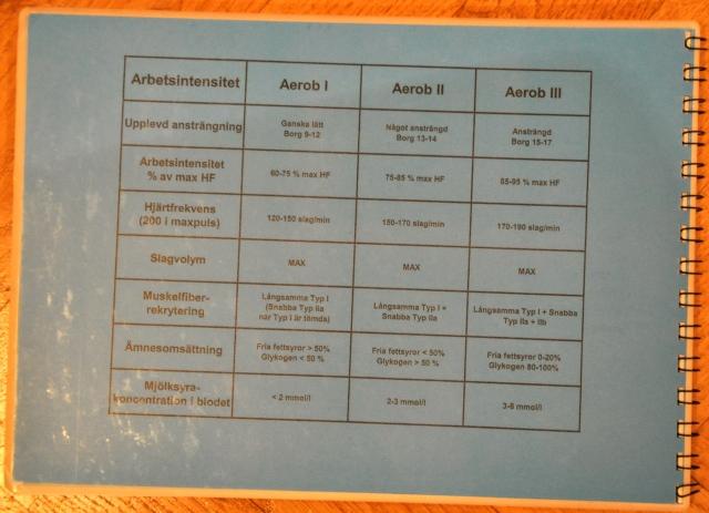 A1, A2, A3 förklaringar med pulszoner