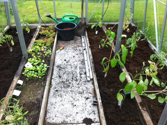 Fem säckar jord till på det här så kommer växthuset sprudla av tomater och annat gottigt.