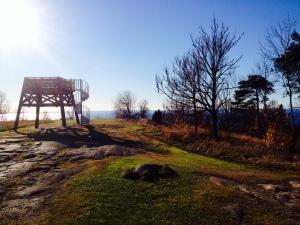 Fotning på Omberg. Väldigt fin plats 270 meter över havet. Jag som trodde Östergötland var platt.