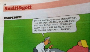 Serien Carpe Diem i Borås Tidning