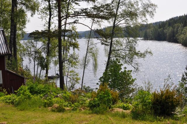 Utsikt över sjön Såken