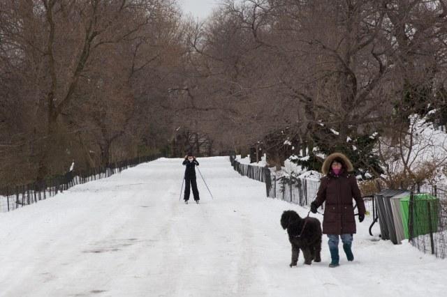 Skidåkning i Central Park. Foto: Adam Johansson, Ada Media Med Mera.