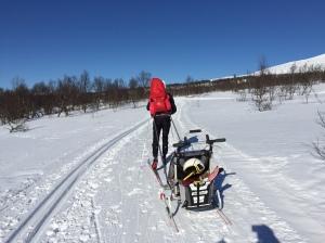 Med bärstol och Chariot i Ullådalen förra veckan