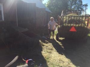 Kände mig som en bonde när jag hjälpte svärfar med höet