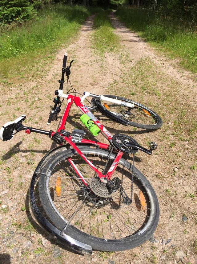 På grusvägarna kring Såken använder jag min Trek Cobia med skärmar, som jag även har som pendlingscykel