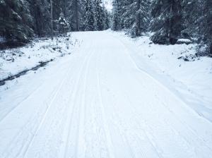Trevligt att åka ett natursnöspår på en mil i Ulricehamn igår