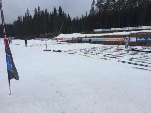 Startfältet vid Wadköpingsloppet 2016