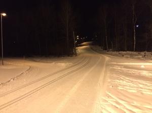Borås skidstadion elljusspåret konstsnöspåret Borgstenabacken