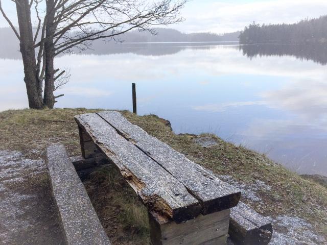 Precis som på många andra ställen i landet kom det snö när jag sprang runt Såken tidigt i morse.