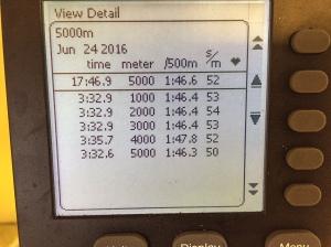 5000 m SkiErg på 17.46 min. PM5, alltså nya maskinen som ger bättre tider än den gamla.