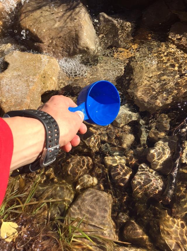 Frihet är att dricka vatten från bäckar med kåsa