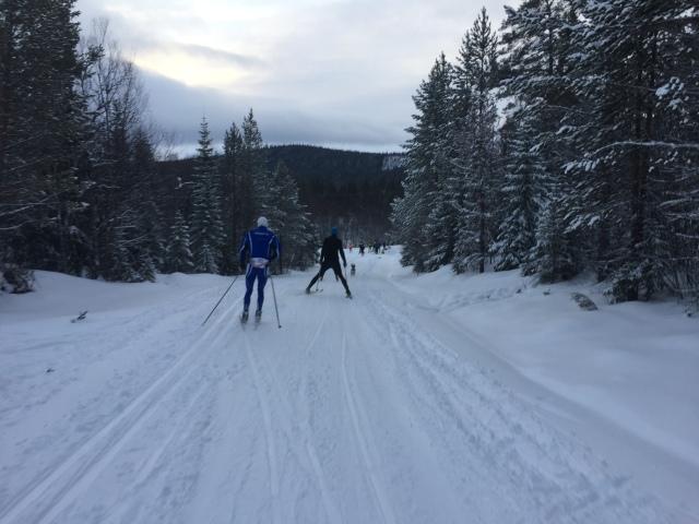 Sofia Henriksson flög förbi med sin hund nedför intervallspåret. Jag var för långsam med mobilen för att få en bra bild. Inte lätt i 50 blås. På 2 km snittade jag drygt 40 km/h. Bra backe.