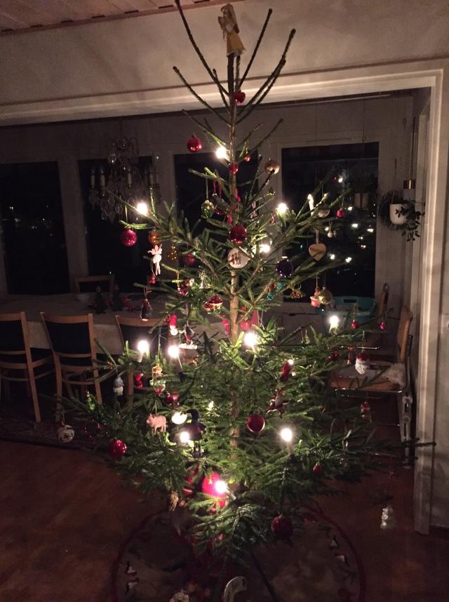 Vår julgran i år