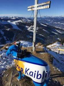 Drygt 2000 m ö h i Hauser Kaibling. Högsta punkten i alpinområdet med de fyra hopsatta anläggningarna Hauser Kaibling, Planai, Hochwurzen und Reiteralm.