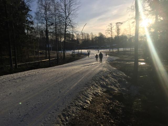 Borås skidstadion 28 dec 2016. Alla som bor i Borås vet att det är vardagsmat med solsken i textilstaden.