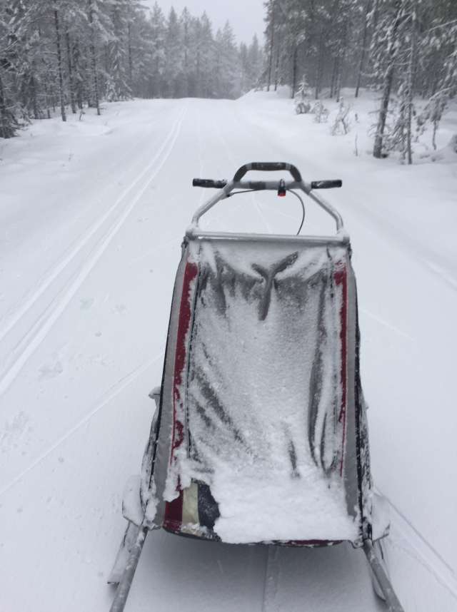En snöig dubbel-Chariot