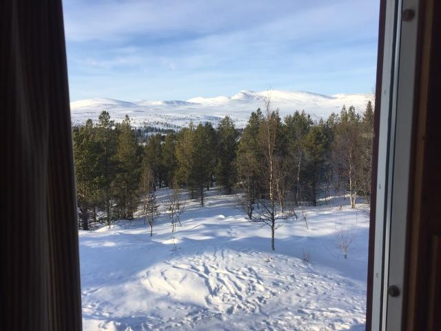Utsikt från restaurangen på STF Grövelsjön Fjällstation