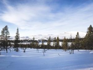 Grövelsjön vinter. Foto: Love Ljungström.