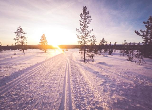 Skidspår Grövelsjön. Foto: Love Ljungström.