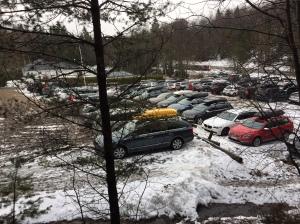 Hestrastugan bjöd på en smockfull parkering igår. Jag har nog aldrig sett så många bilar där. Och mycket riktigt var det deltagarrekord i Linnévasan, över 200 st.