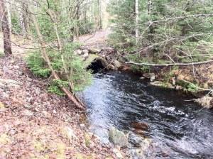 """""""Trollets bäck"""" och """"Trollet bra"""", drygt 300 meter från där vi bor i Lundaskog. Hit går vi ofta. Extra strömt igår med tanke på allt regn senaste dagarna i Borås."""