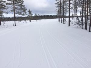 Vasaloppsspåret nära Smågan 2 mars 2017