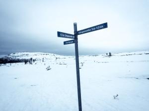 Fin skare på platån mellan Städjan och Nipfjället