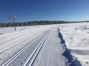 Vasaloppsspåret på myrarna mellan Smågan och Mångsbodarna fredag 3 mars 2017. Vädret funkade.