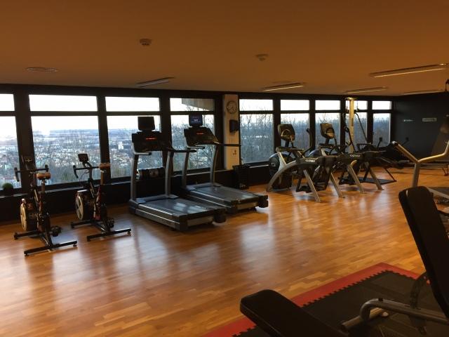 Även gymmet på First Hotel Billingehus bjöd på fin utsikt. Pluspoäng för fint gym med SkiErg, roddmaskin och ett par wattbikes.