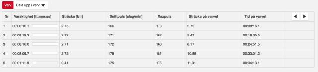 Varvtider veteran-SM. Fyra ganska jämna varv, det fjärde snabbaste. Femte spliten är sista biten in mot mål.