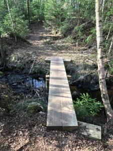 Borås Stad ska ha mycket cred för arbetet med den nya vandringsleden. Nya spänger, broar och bord.