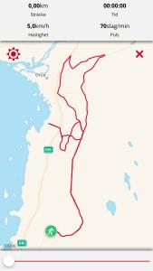 Fina rullskidvägar öster om 45:an mellan Mora och Orsa