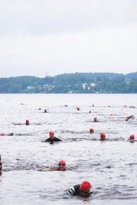 Simning Borås Triathlon 2017. Foto: Love Ljungström.
