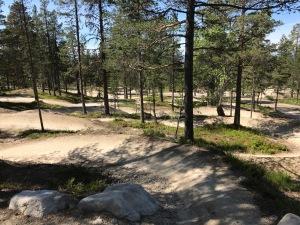 Teknikbana för MTB i bike park på Idre Fjäll