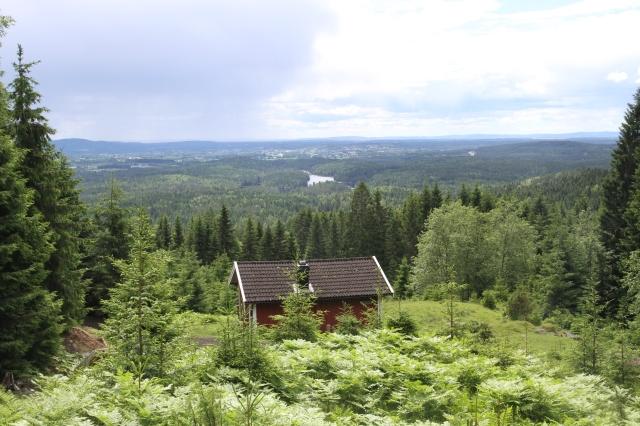 """Vi gick med barnen till Anna och Haralds """"hytte"""" som ligger några kilometer bort. Fin utsikt över bl a Mjøsa."""