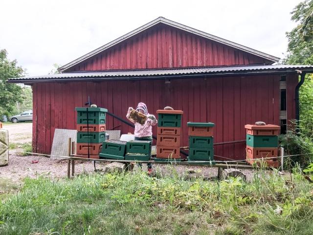 Mormors bin på Lönnåsen