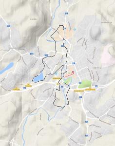 Nya sträckningen på 10 km-banan i Kretsloppet ska ha mycket cred. Loven över Druvefors och Göta blev mycket bättre än Almenäsvägen. Och kul att springa in på Ryavallen.