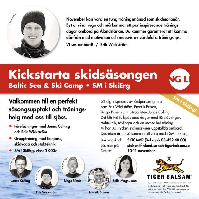 Tigerbalsam-Viking-Line-Erik.jpg