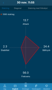 Racefox-värden 8 km stakning på konstsnö i Ulricehamn på skejtskidor. Inte supersnabbt före. Sådär för stavarna i uppförsbackarna.