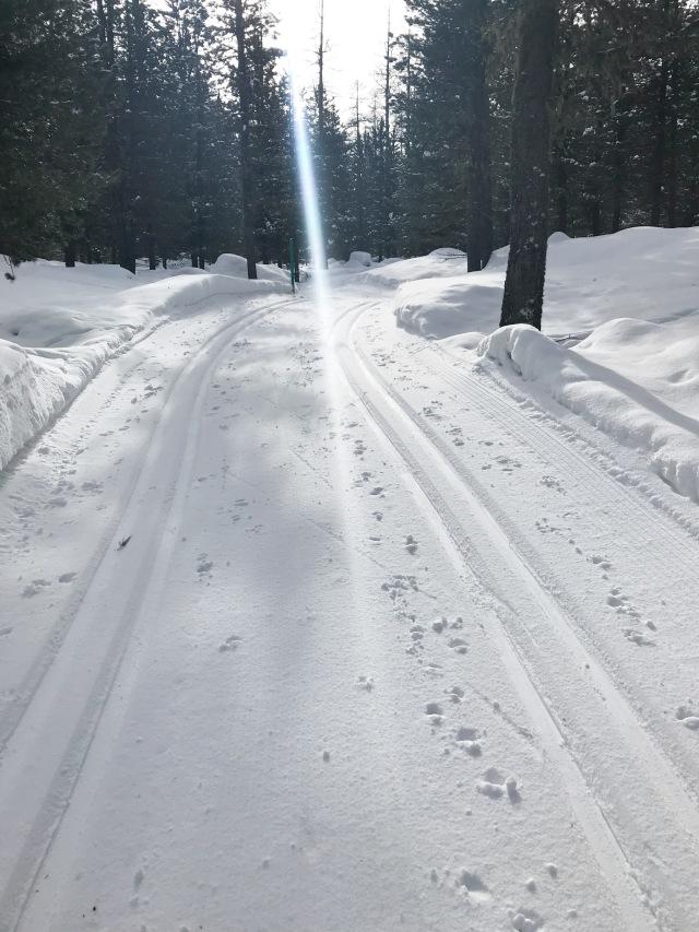 Fint i La Diagonela-spåret ovanför Pontresina, där jag f ö bodde då jag åkte Engadin Skimarathon 2000 och 2001