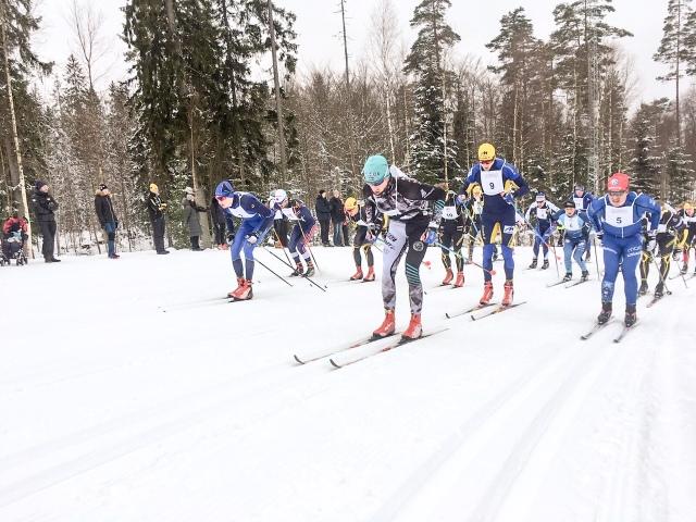 Starten Västgötaloppet 2018. Foto: Martin Damm.