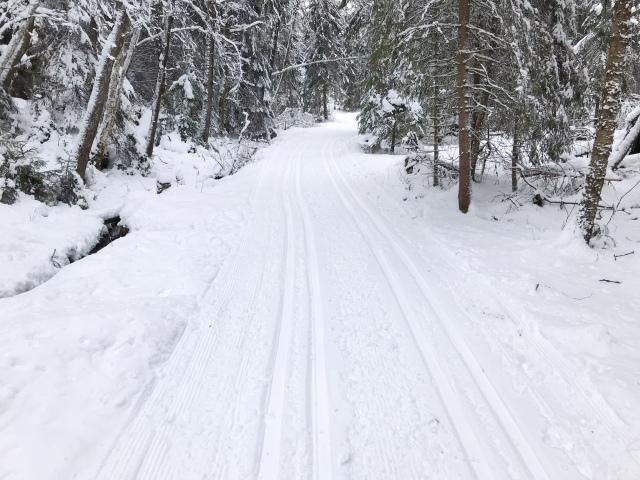 Skidspår vid Hestrastugan, natursnö