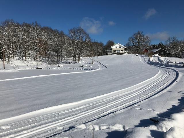 I Hulebo i övre delen av Sjömarken drar dem egna spår kring husen!