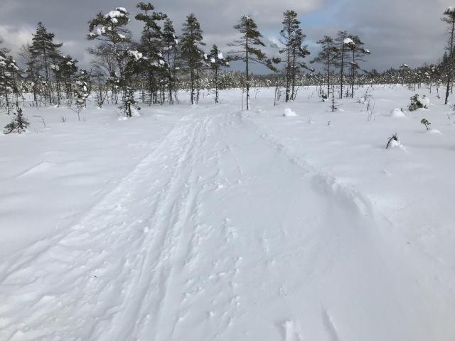 Den torra nysnön yrde igen idag på Ymers milspår. Det problemet har vi ungefär en gång vart femte år i Borås.