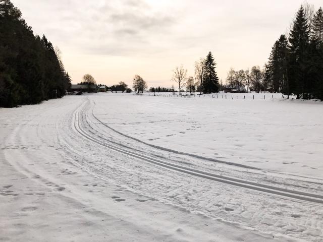 Skare på ängarna vid Nordtorps 2,5 km-spår