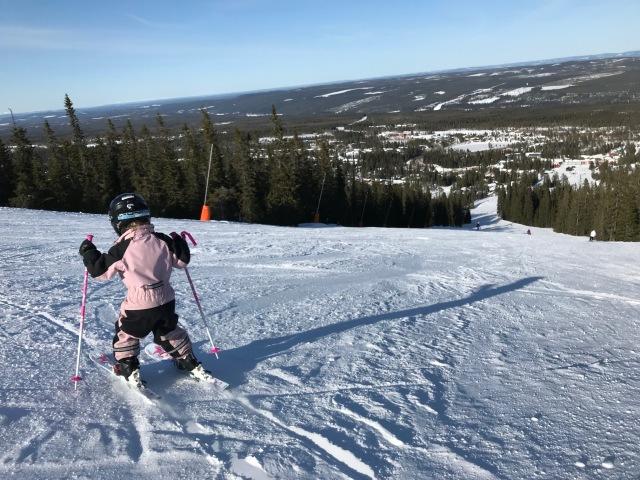 Otroligt kul att se Astrid och Majs glädje i slalombackarna. De älskar denna sysselsättning, särskilt med kusinerna. De är också roligt att se deras framsteg.