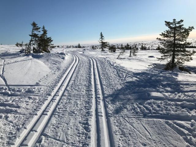 Fint på fjället mellan Storfjällsgraven och Hemfjällsstugan. Men inte pistat för skejt.