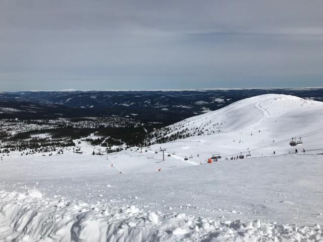 Igår tog vi en dag i Trysil. Oändligt mycket bättre utförsåkning än Lindvallen, både för stora och små.